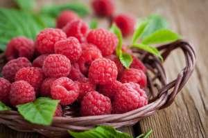 raspberries-1880x1254